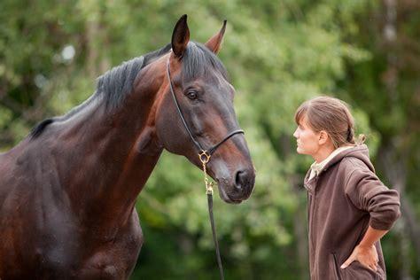 behavior equine understanding horse health years had