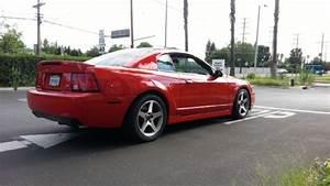 Photos   2003 Ford TERMINATOR [SVT Mustang Cobra] For Sale