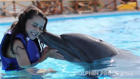 Dolphin Trainer For A Day In Cabo, Learn How To Train A