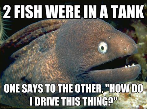 Bad Joke Eel Meme - aquarium related memes
