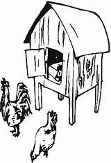 Chicken Chook Template Coloring Coop Sketch Farm Drawings sketch template