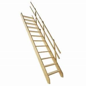 Echelle Pour Escalier : echelle de meunier castorama ~ Melissatoandfro.com Idées de Décoration