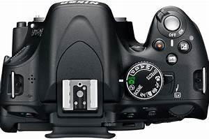 Nikon D5100 Manual Instruction  Free Download User Guide Pdf