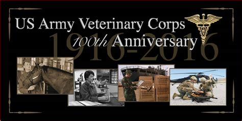 army veterinary corps