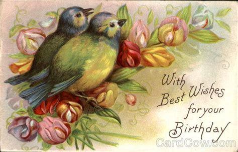 wishes   birthday birds