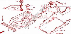 Fuel Tank For Honda 50 Dio 1996   Honda Motorcycles  U0026 Atvs