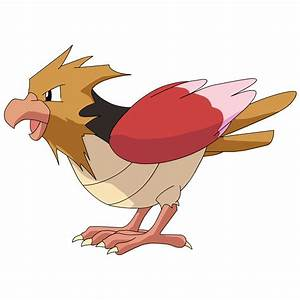 Spearow Images | Pokemon Images