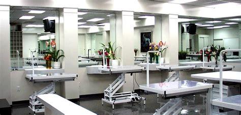 grooming salon ideas google search grooming salon