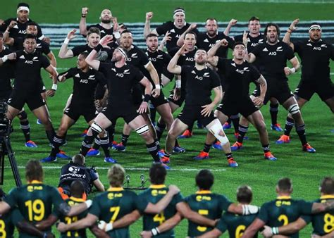 Rugby Championship fixtures: Springboks and All Blacks ...
