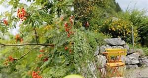 Eberesche Im Garten : ein schweizer garten zu besuch bei ~ Yasmunasinghe.com Haus und Dekorationen