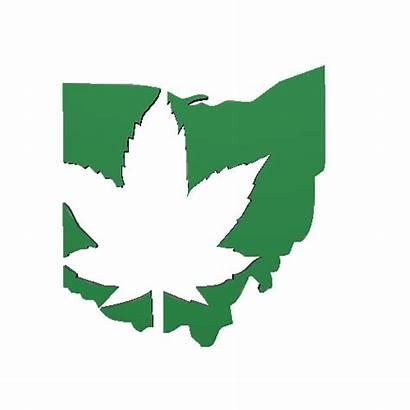 Marijuana Ohio Medical Strawberry Card June Marietta