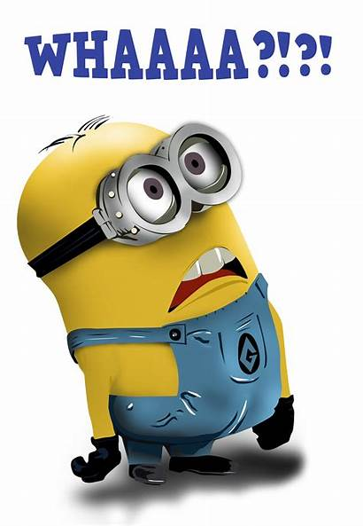Minion Minions Mark Boss Funny Know Questions