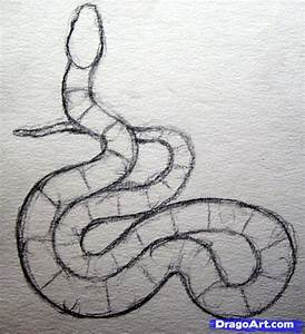 How To Draw A Realistic Snake Draw Real Snake Step By