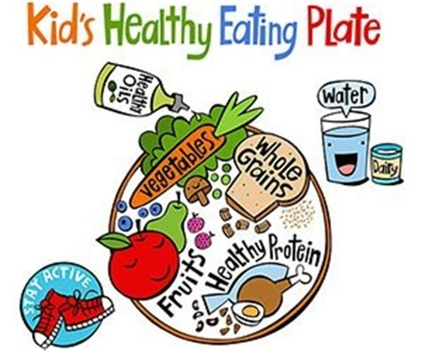 nutrition source harvard  chan school  public