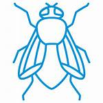 Fly Housefly Icon Pest Insect Outline Control