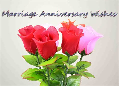 wishes happy anniversary  hd wallpaper  roses