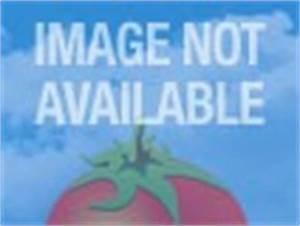 Waterworld (1995) - Rotten Tomatoes