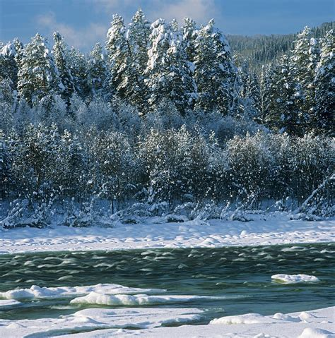 vista prints christmas cards winter river photograph by pavel filatov
