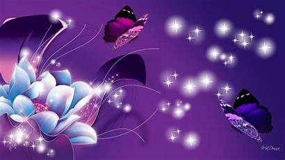 Purple Flower Butterflies Butterfly Background Wallpapers Wall