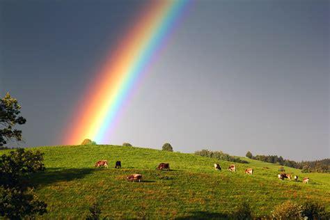 die  besten regenbogen hintergrundbilder