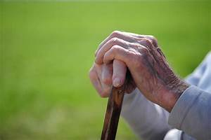 Bring Joy and Goodness to Aging Parents By Susan Diamond ...