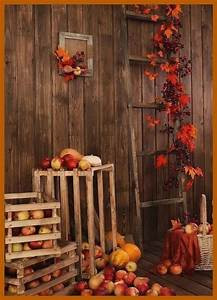 pin, by, autumn, jacunski, on, favorite, time, of, the, year
