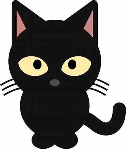 Cat Funny Clip Clipart