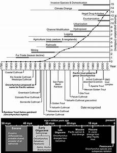 Timeline Covering Past  Current  And Future Anthropogenic