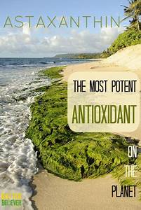 The Most Potent Antioxidant On The Planet