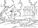 Coloring Pages Sausage Dog sketch template