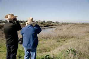 File:Old people looking at something.jpg - Wikimedia Commons