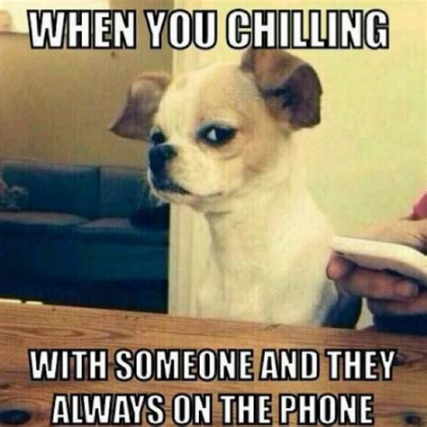 Dog On Phone Meme - when you chilling with someone and they always on the phone