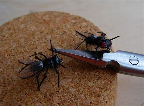 antennes herls de faisan noirs