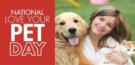 Love Your Pet Day: Dog Treat Recipes   Mr. Appliance Blog
