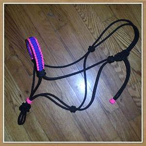 rope horse halter with cobra braid paracord nose band on