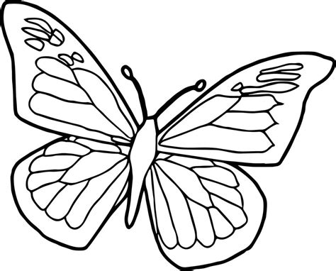 Butterflies coloring pages for kids. Butterfly Coloring Pages For Toddlers
