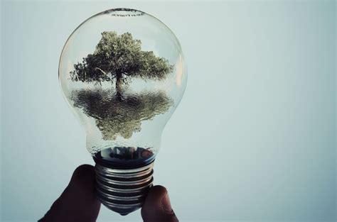 photography light bulbs est100 一些攝影 some photos light bulbs 燈泡