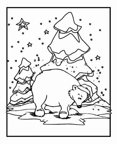 Coloring Pages Bear Polar Winter Animals Hat