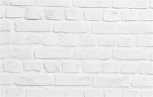 Brique De Parement Blanche : brique solide blanche ~ Dailycaller-alerts.com Idées de Décoration