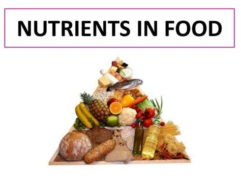 n駮n cuisine nutrients in food