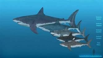 Megalodon Shark vs Dinosaur