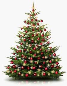 Geschmückte Weihnachtsbäume Christbaum Dekorieren : geschm ckte weihnachtsb ume zu g nstigen fullservice preisen ~ Markanthonyermac.com Haus und Dekorationen
