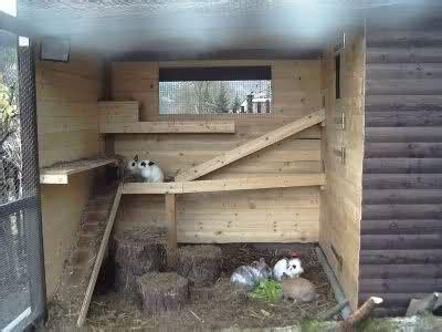 kaninchen auslauf selber bauen bilder eurer kaninchenst 228 lle und au 223 engehege kaninchen forum by sweetrabbits made with