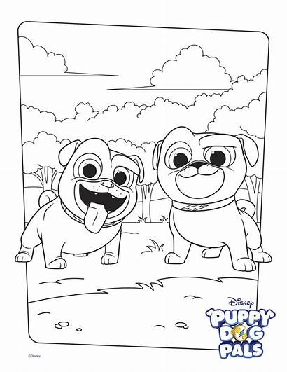 Pals Puppy Coloring Bingo Dog Pages Printable