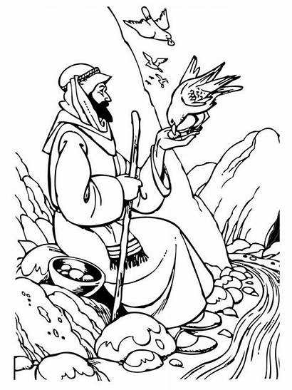 Elijah Coloring Pages Samaritan Birds Hungry Feeding