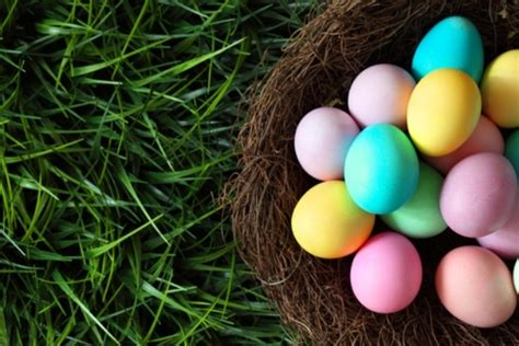 Easter Gift Ideas 10 Products And Other Ideas To Enjoy. Backyard Ideas Low Budget. Ideas Decorating Jars Christmas. Lunch Ideas Recipes. Deck Upgrade Ideas. Backyard Border Landscaping Ideas. Easter Basket Ideas Tweens. Proposal Ideas In Miami. Bathroom/laundry Ideas For Small Spaces