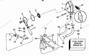 Johnson Outboard Parts By Year 2000 Oem Parts Diagram For Fuel Pump  U0026 Filter