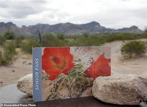 national parks lifetime pass seniors snap up us national park passes before price hike daily mail online
