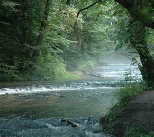 File:Poland Tanew - nature reserve Szumy na Tanwi.jpg ...
