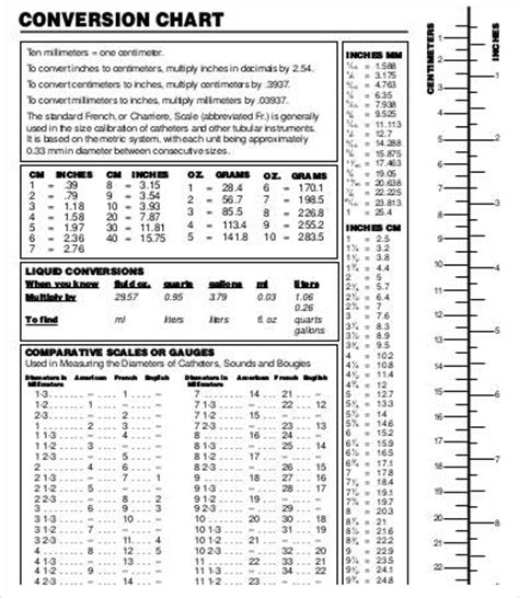 Editable Liquid Measurement Chart  9+ Free Word, Pdf